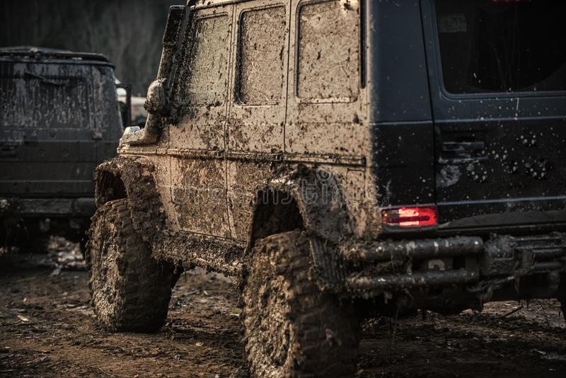 Racing on off-road cars. Dirty offroad cars on dark background, back view. SUV covered with mud with brake light turned on. Crossover after racing on stock photo