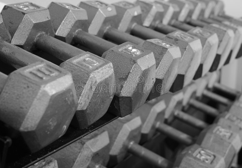 Rack of Free Weight Dumbells royalty free stock images