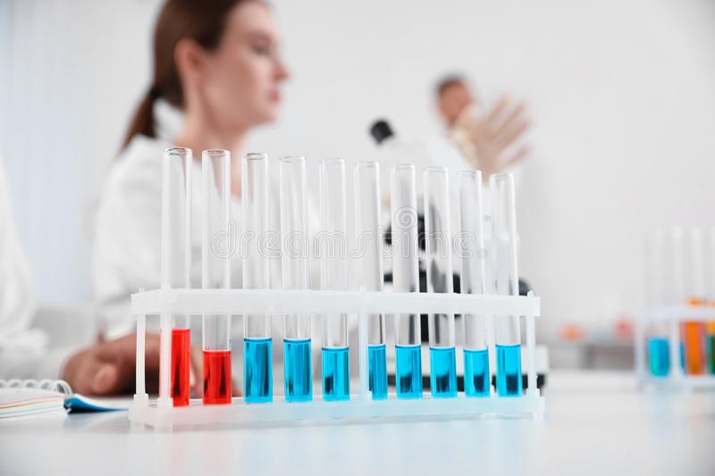 Rack with test tubes on white table and laboratory assistants in room royalty free stock images