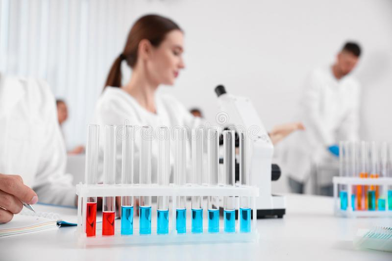 Rack with test tubes on white table and scientists. Medical research royalty free stock image