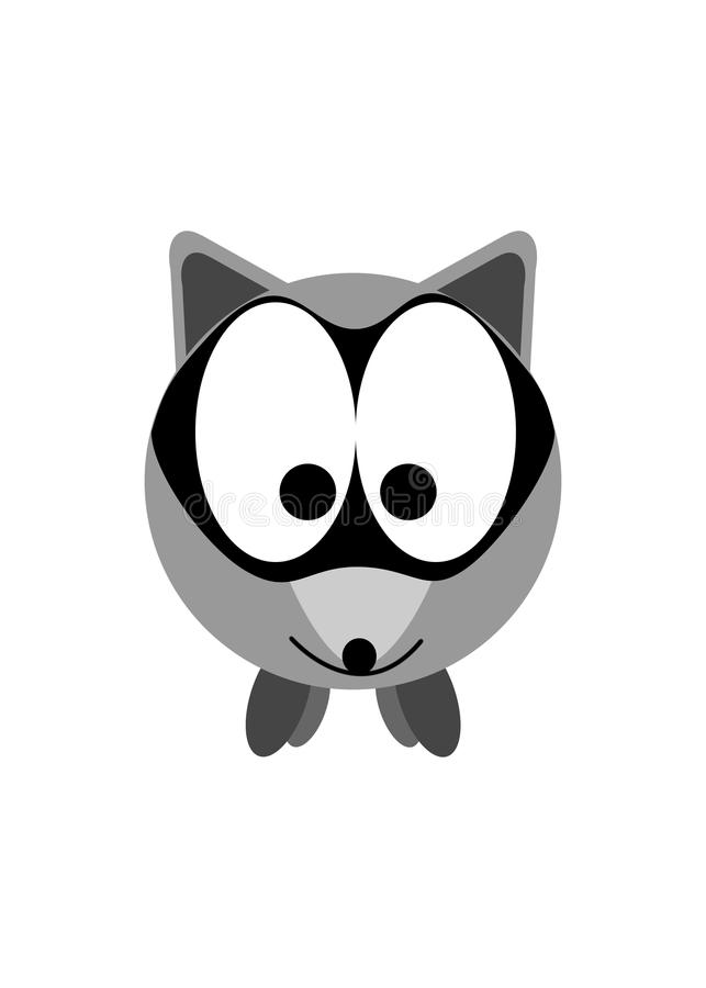 Racoon stock image