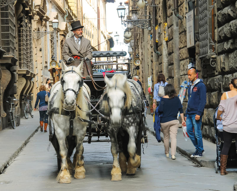 Racy coachman rides in a carriage pulled by horses in Florence. FLORENCE, ITALY - MAY 08, 2014: Racy coachman rides in a carriage pulled by horses in Florence royalty free stock image