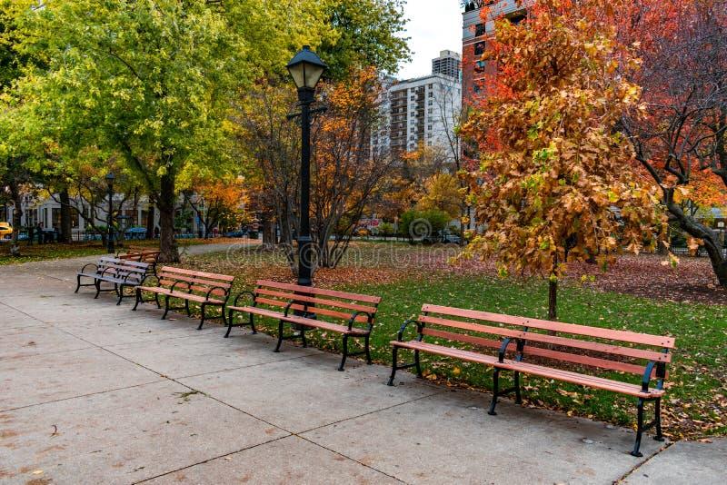 Rad av bänkar på Washington Square Park i Chicago under höst royaltyfria bilder