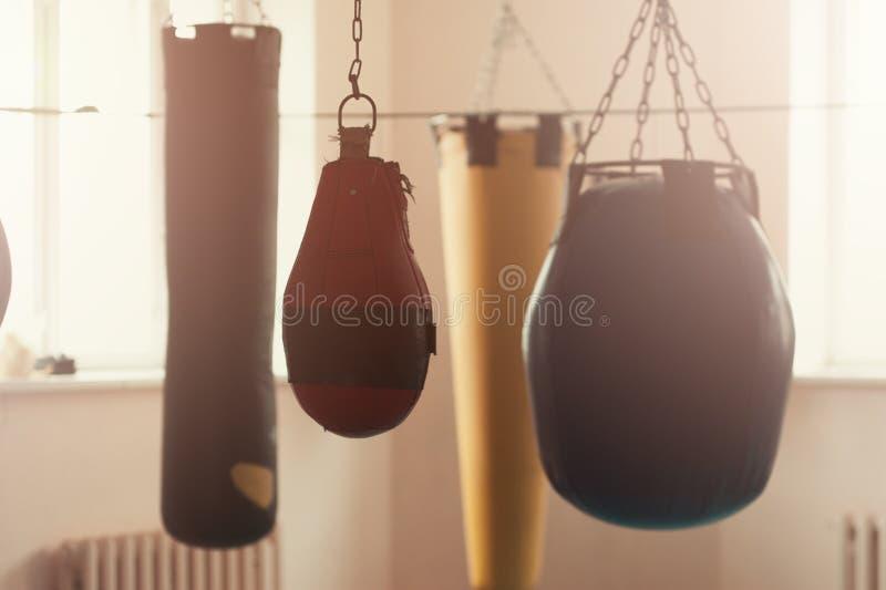Rad av boxningpåsar i sportidrottshallen royaltyfria foton