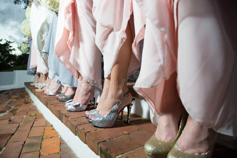 Rad av brudtärnor i klänningar royaltyfria foton