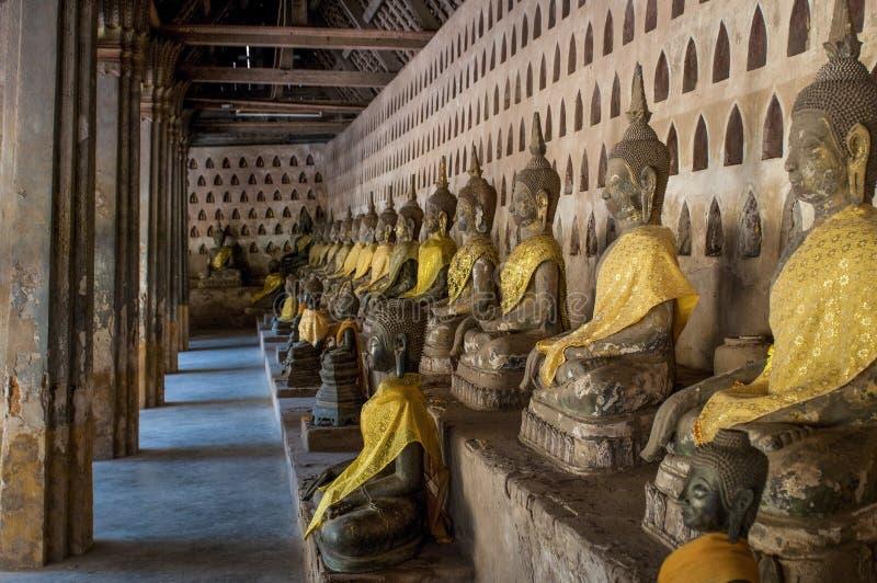 Rad av Buddhastatyer, Wat Sisaket, Vientiane, Laos arkivbilder