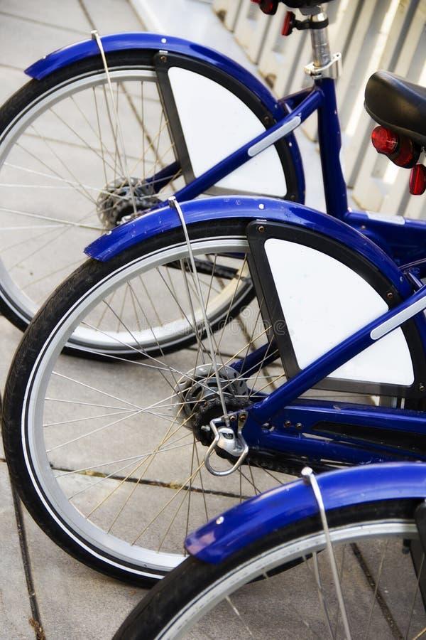 Rad av cykelgummihjul arkivbilder