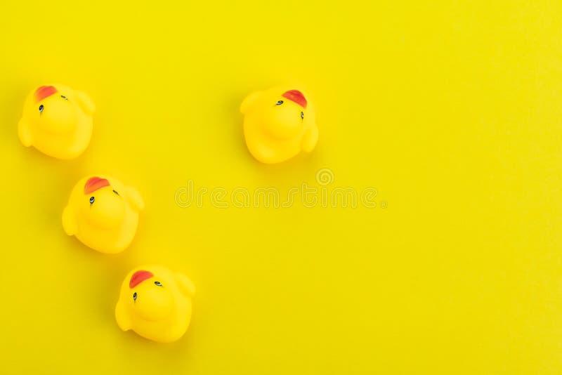 Rad av gula gulliga gummiänder med en som vänder mot i en olik riktning på fast gul bakgrund genom att använda som unikt, skillna royaltyfri bild