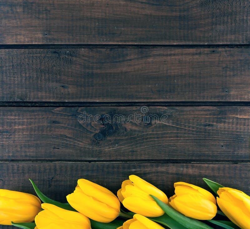 Rad av gula tulpan på mörk lantlig träbakgrund Vår fl royaltyfria bilder