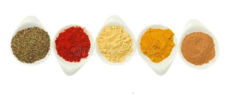Rad av kryddor på vit royaltyfri foto
