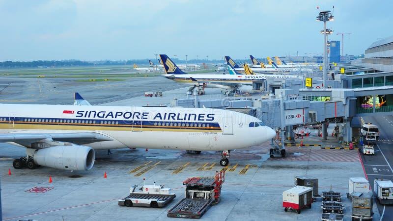 Rad av Singapore Airlines, Tiger Air och Silkair flygplan som parkeras på den Changi flygplatsen royaltyfri bild