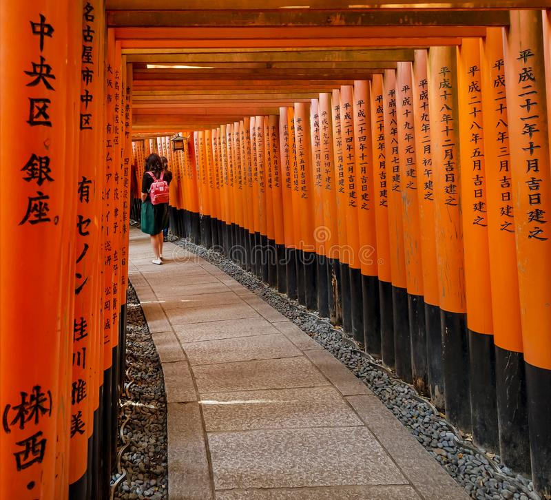 Rad av toriidörrar i den ShintoFushimi Inari relikskrin i Kyoto, Japan royaltyfri bild