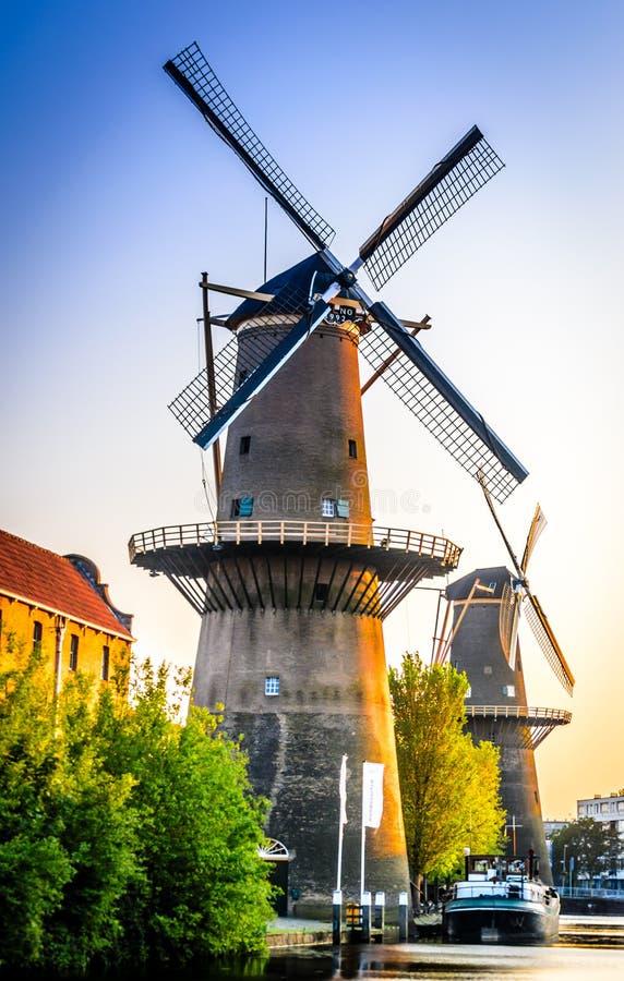 Rad av väderkvarnar i Schiedam, Nederländerna royaltyfria bilder