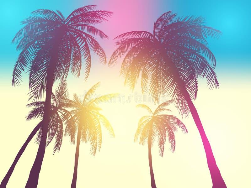 Rad av vändkretspalmträd mot solnedgånghimmel Kontur av högväxta palmträd Vändkretsaftonlandskap Lutningfärg Vektorillus vektor illustrationer