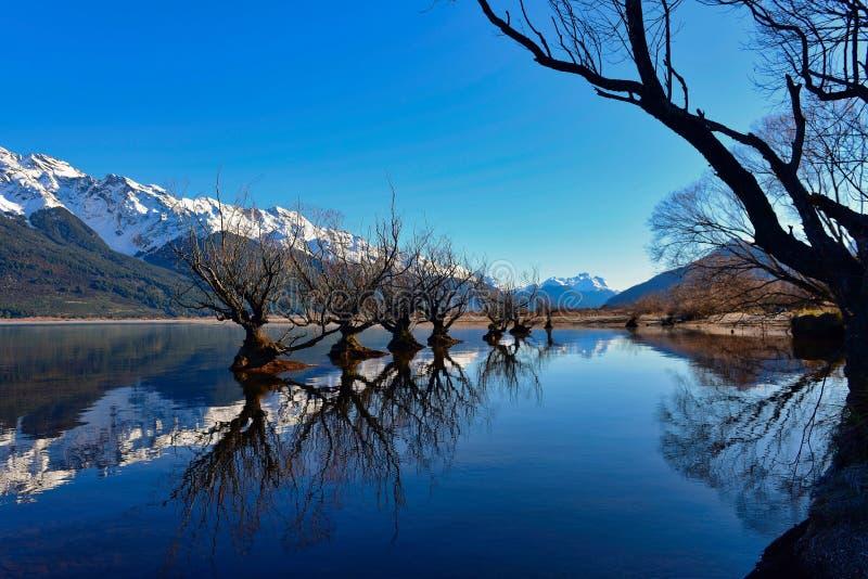 Rad av viden på sjön Wakatipu i Nya Zeeland fotografering för bildbyråer