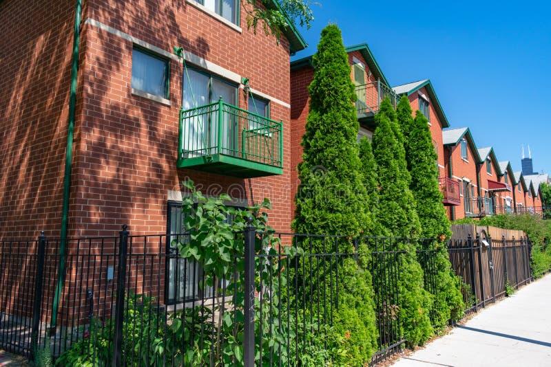 Rad med likartade hem med gröna buskar i Chinatown Chicago arkivbilder