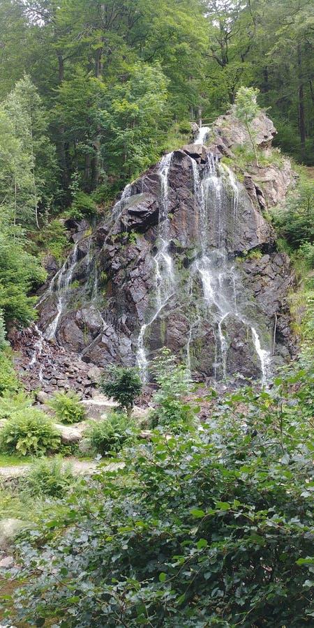 Radau Wasserfall im Harz photographie stock libre de droits