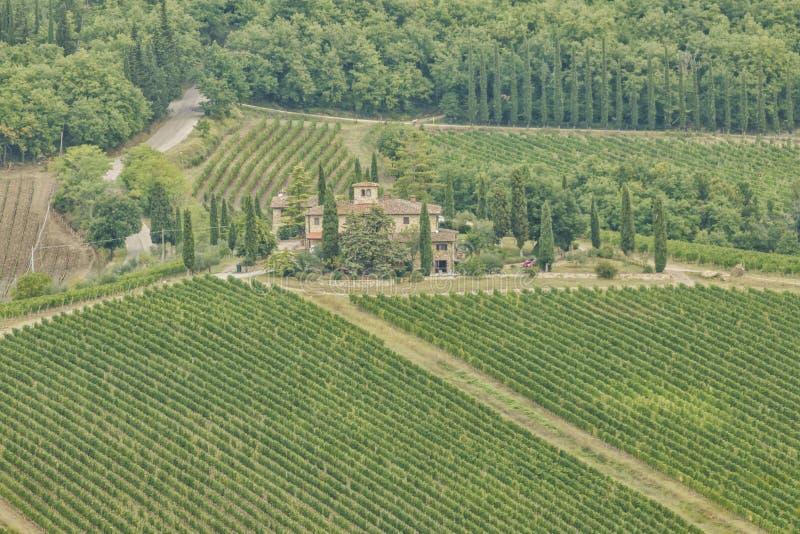 Radda in Chianti住宅区的全景,以及意大利托斯卡纳基安蒂地区的葡萄园和橄榄树 库存照片