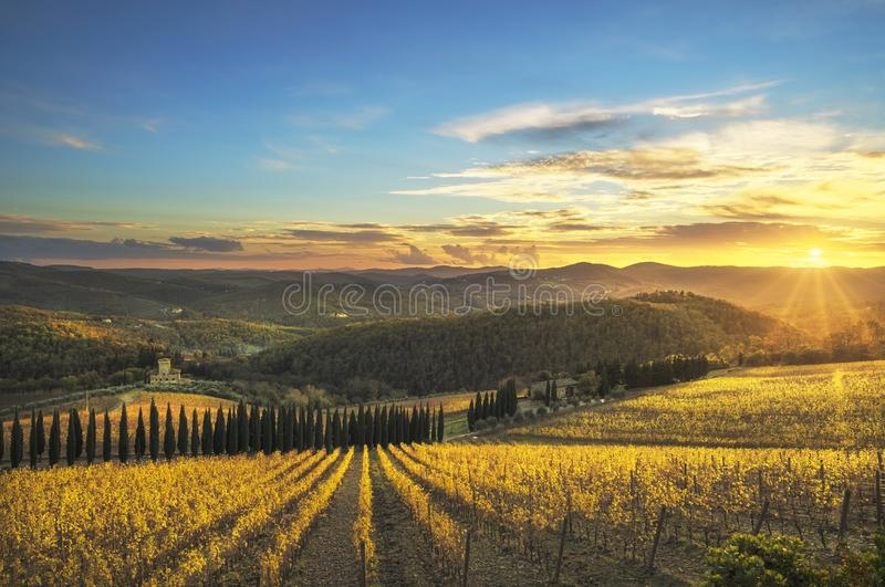 Radda dans le vignoble et le panorama de chianti au coucher du soleil La Toscane, Italie images libres de droits
