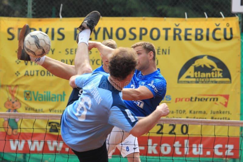 Radek Pelikan - futnet fotografia de stock royalty free