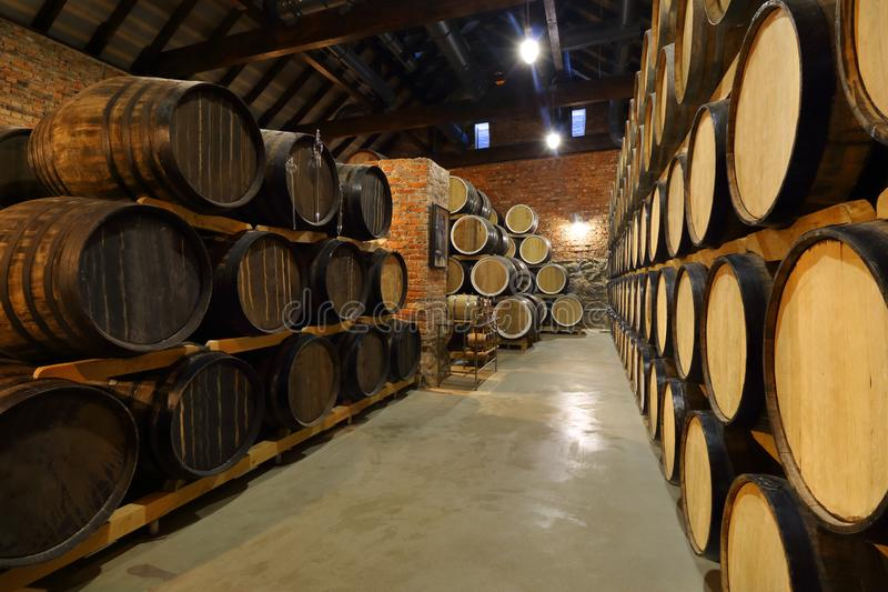 Rader av alkoholiserade trummor hålls i materiel spritfabrik Cognac whisky, vin, konjak Alkohol i trummor, alkohol royaltyfri foto