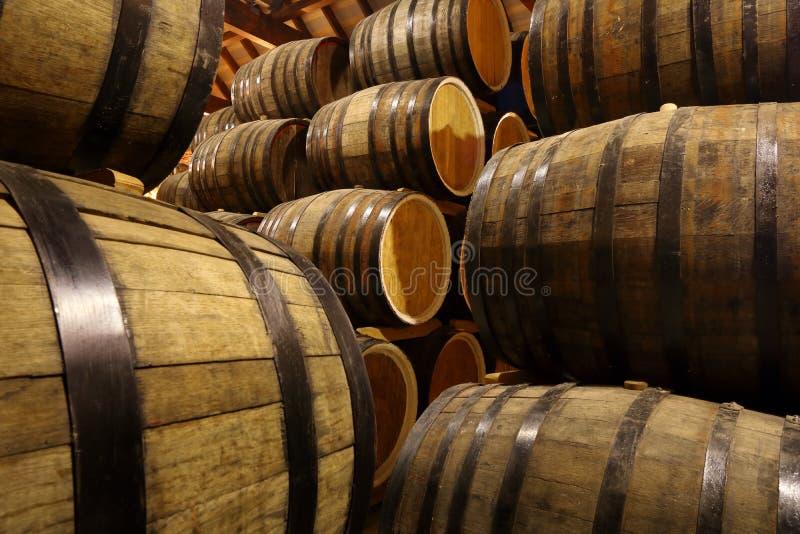Rader av alkoholtrummor i materiel spritfabrik Cognac whisky, vin, konjak Alkohol i trummor arkivbilder