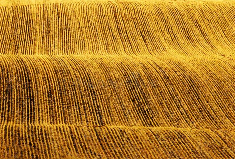 Rader av fåror i plogat fält arkivbild