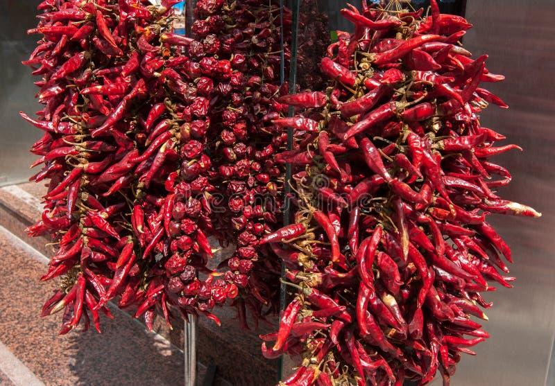 Rader torkade glödheta Chili Peppers som utomhus hänger fotografering för bildbyråer