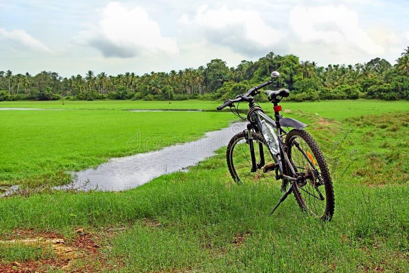 Radfahren entlang Landschaft von Goa Indien stockbilder