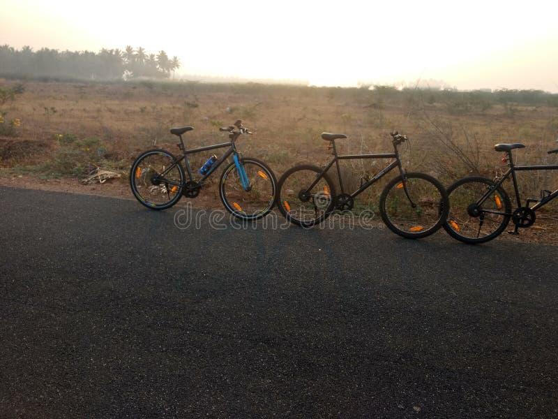 Radfahren am Morgen stockfotografie