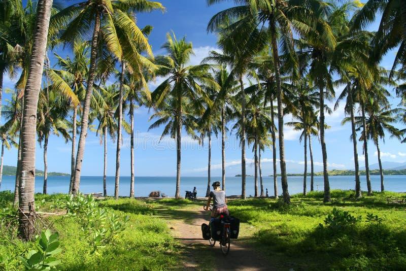 Radfahren in Tropen lizenzfreie stockfotos