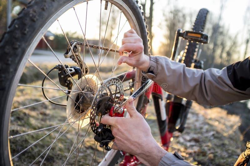 Radfahrer überprüft das Rad des Fahrrades, nachdem er in den Park gefahren ist stockfotos