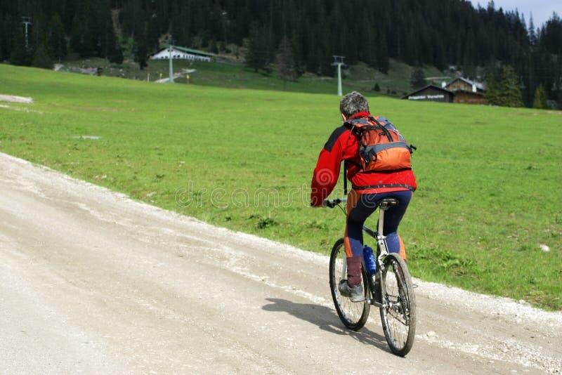 Download Radfahrer auf Gebirgsspur stockfoto. Bild von gras, pfad - 44192