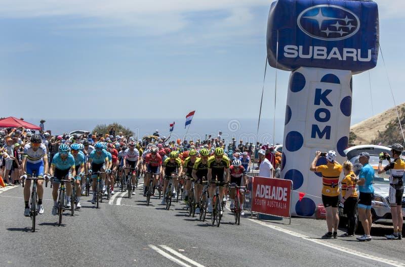 Radfahrer konkurrieren am Ausflug unten darunter lizenzfreie stockfotografie
