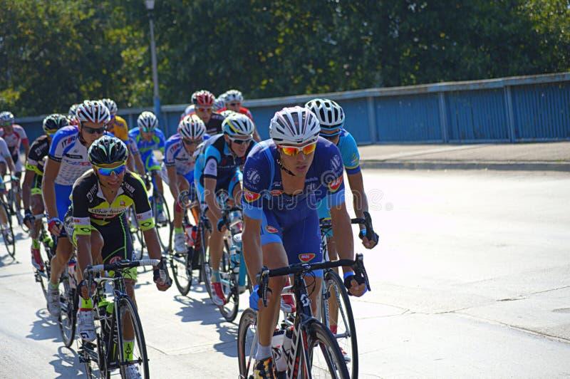 Radfahrer Pelotonlaufen lizenzfreie stockfotos