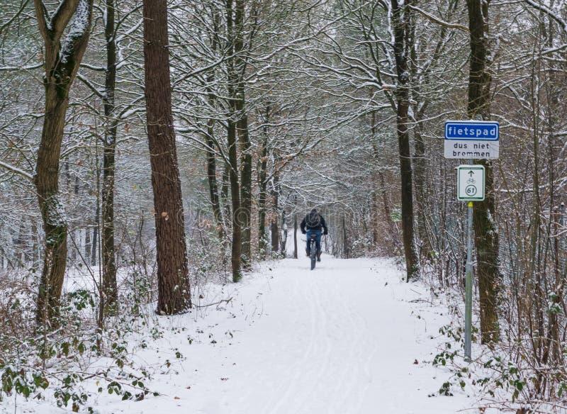 Radfahrer völlig, der herein auf eine weißer Schnee bedeckte Straße, fahrend in eine schneebedeckte Waldlandschaft radfährt rad lizenzfreie stockfotografie