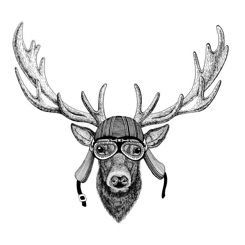Radfahrermotorradfliegerfliegenclub-Sturzhelm Illustration des wilden Tieres der Rotwild tragende für Tätowierung, Emblem, Auswei lizenzfreie abbildung