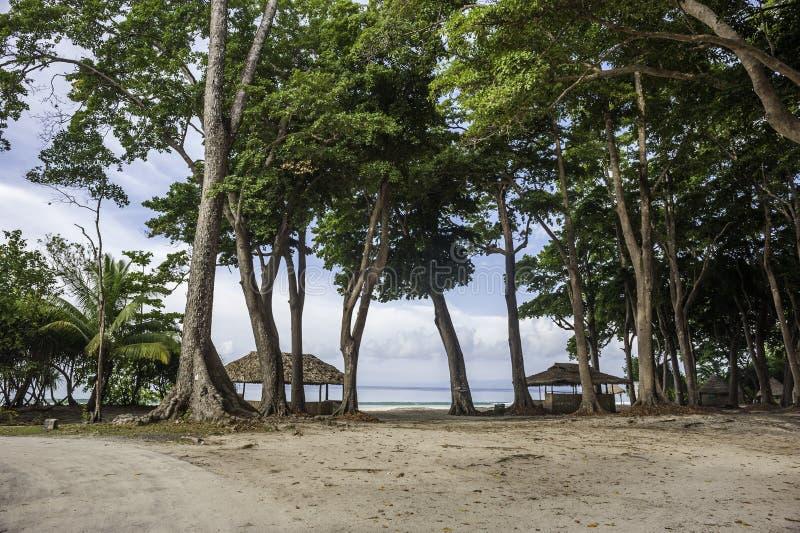 Radhanagar strand arkivbild