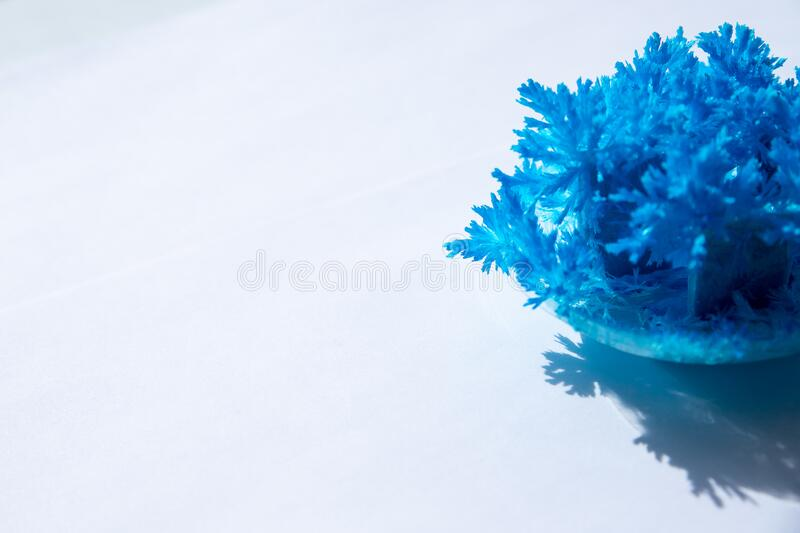 Radiant crystals grown at home. Chemical experience for children.Cultivation of radiant crystals. Synthetic crystal.diy. Radiant crystals grown at home. Chemical stock photos