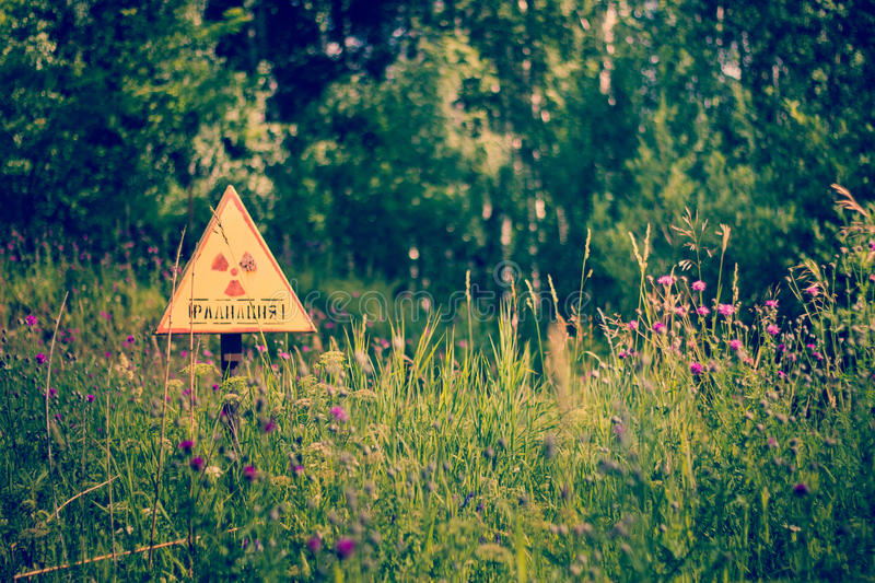 Radiation, grass, summer. Warning sign of increased radiation in the forest, Siberia, 2012 royalty free stock photography