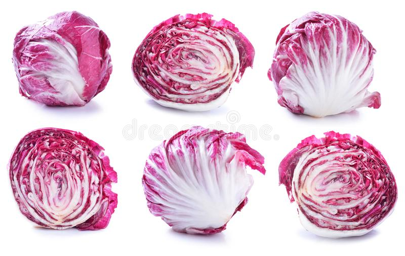 Radicchio, ensalada roja aislada en blanco foto de archivo