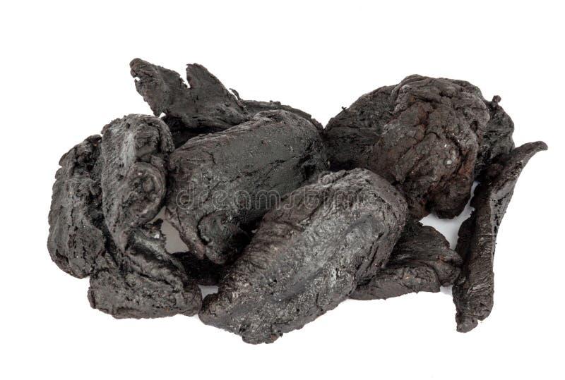 Radice secca di Rehmannia o di Shu Di Huang Glutinosa fotografie stock libere da diritti