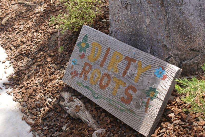 Radici sporche del giardino immagine stock