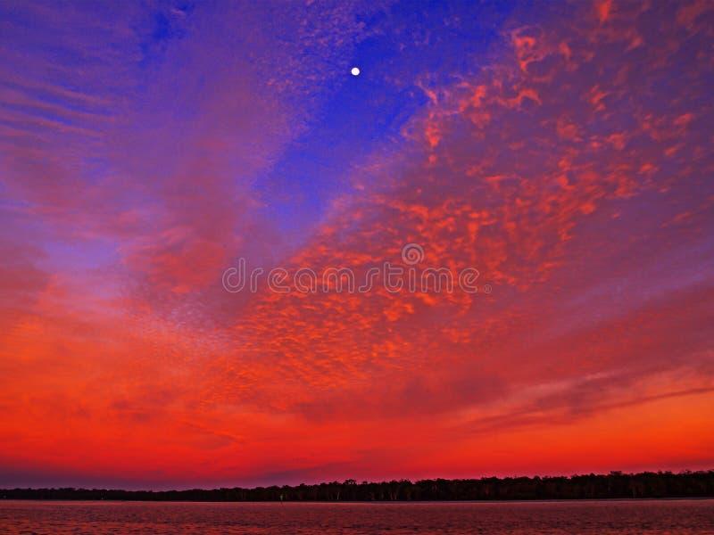 Radient färgade den karmosinröda cirrusmolnet kust- soluppgångseascape i en viv arkivfoto