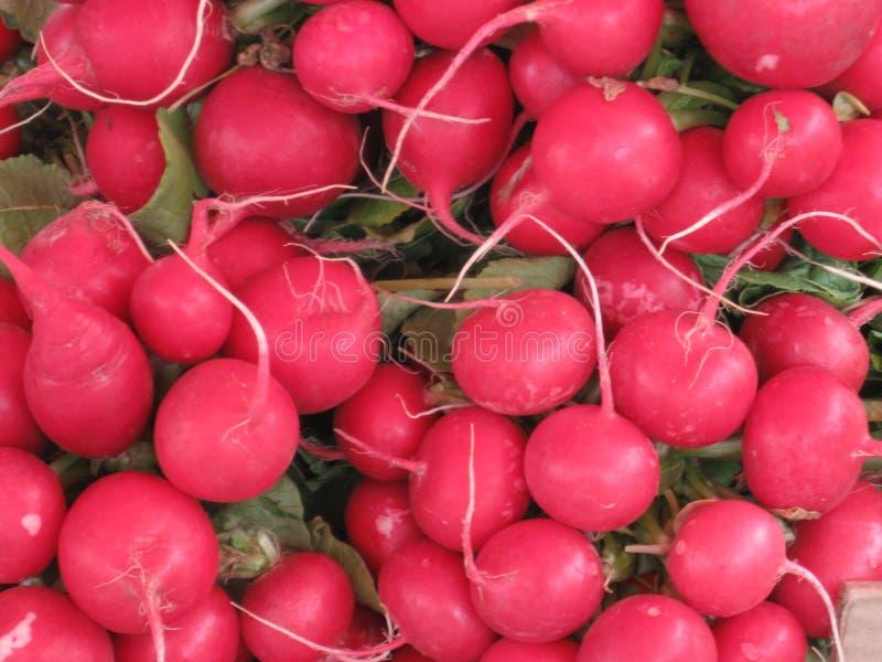 radijs heel wat radijzen bazaar Groenten voor verkoop Verse product-groenten vegetables Grote radijs stock fotografie