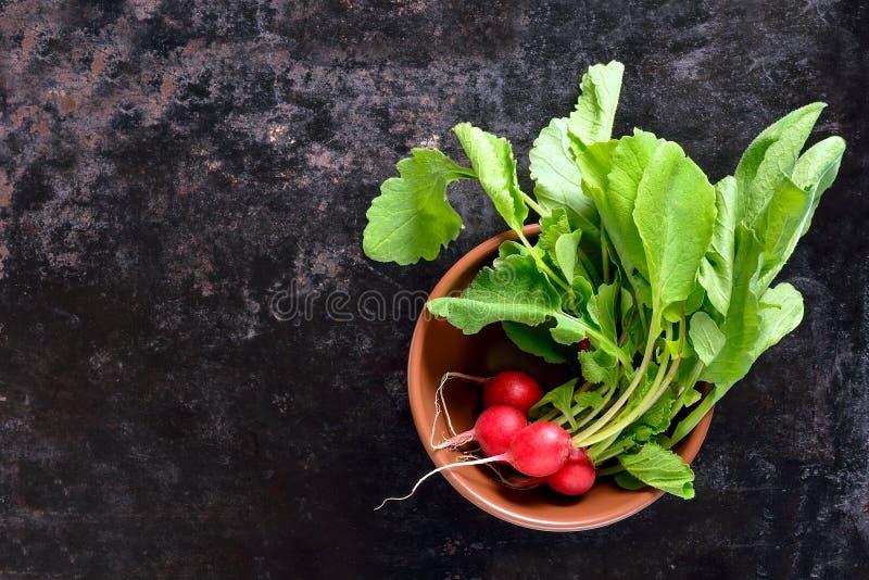 Download Radijs Op Een Donkere Achtergrond Stock Foto - Afbeelding bestaande uit kruiden, eating: 54081820