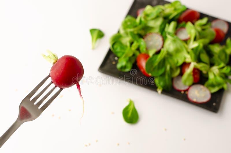 Radijs op een vork op een resh plantaardige salade vage achtergrond stock fotografie