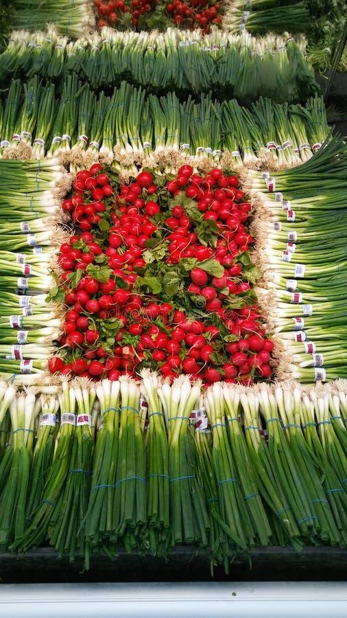 Radijzen en groene uien stock afbeeldingen