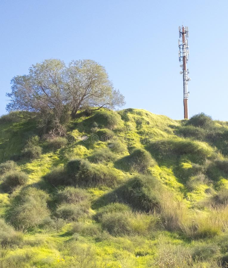 Radio and telephone broadcast antenna on a hill covered with green grass and bushes.  stock photos