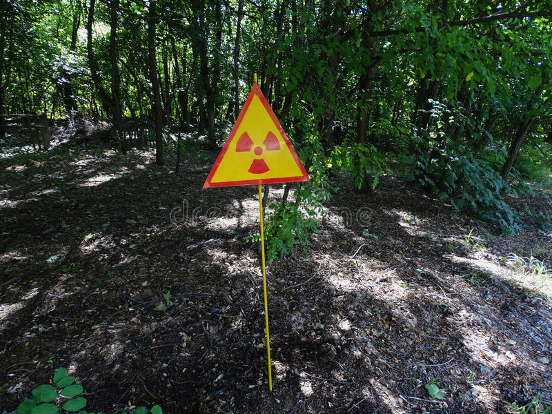 Radioactive sign. In the forest near Chernobyl stock image